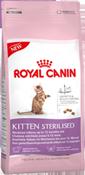 rcf_kitten-steril